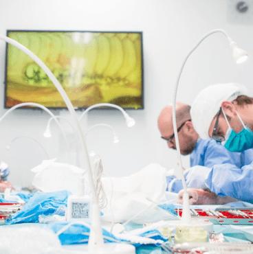 Osez l'implantologie